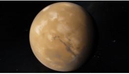 Роль Венеры в стихиях Огня и Земли